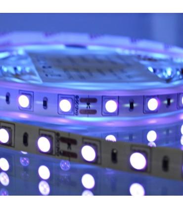 TIRA LED UV 12V 5050 IP20
