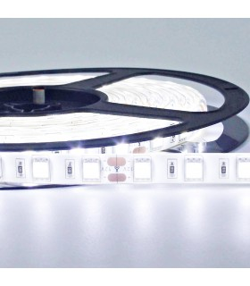 TIRA LED 12V SMD 5050 IP65