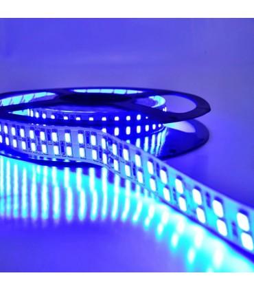 TIRA LED 24V doble fila azul detalle