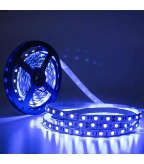 TIRA LED 12V SMD 5050 IP20 AZUL