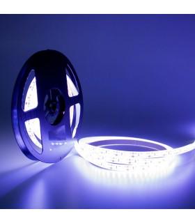 TIRA LED 12V SMD 2835 IP20 120 CHIPS