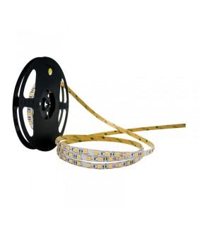 TIRA LED 24V 5050 IP20 14.4W/M