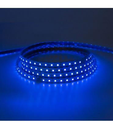 TIRA DE LED 220V 10MM