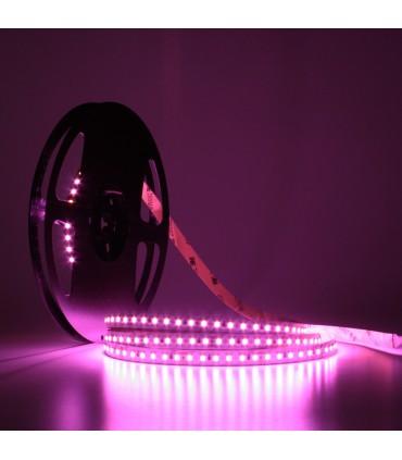 TIRA LED ROSA 24V 120 CHIPS