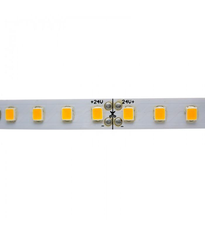 TIRA LED 24V 2835 IP20 640CHIPS 12W/M 5M 8MM