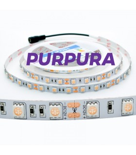TIRA 12V 5050 IP20 60CHIPS 14.4W/M PURPURA UV