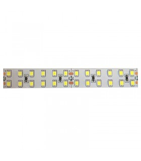 TIRA LED 24V SMD 2835 IP20 240 CHIPS/M 20w/m 6000k