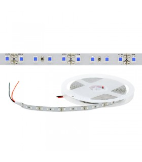 TIRA LED 12V AZUL IP20 112CHIP/M 10W/M