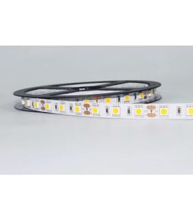 TIRA LED 12V SMD 5050 IP20