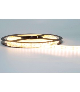 TIRA LED 12V SMD 2835 IP65 120 CHIPS