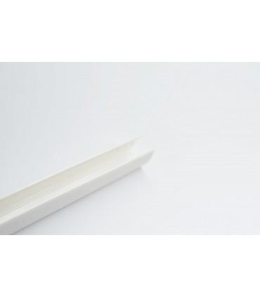 PERFIL TIRA NEON LED 1M 20 W/M